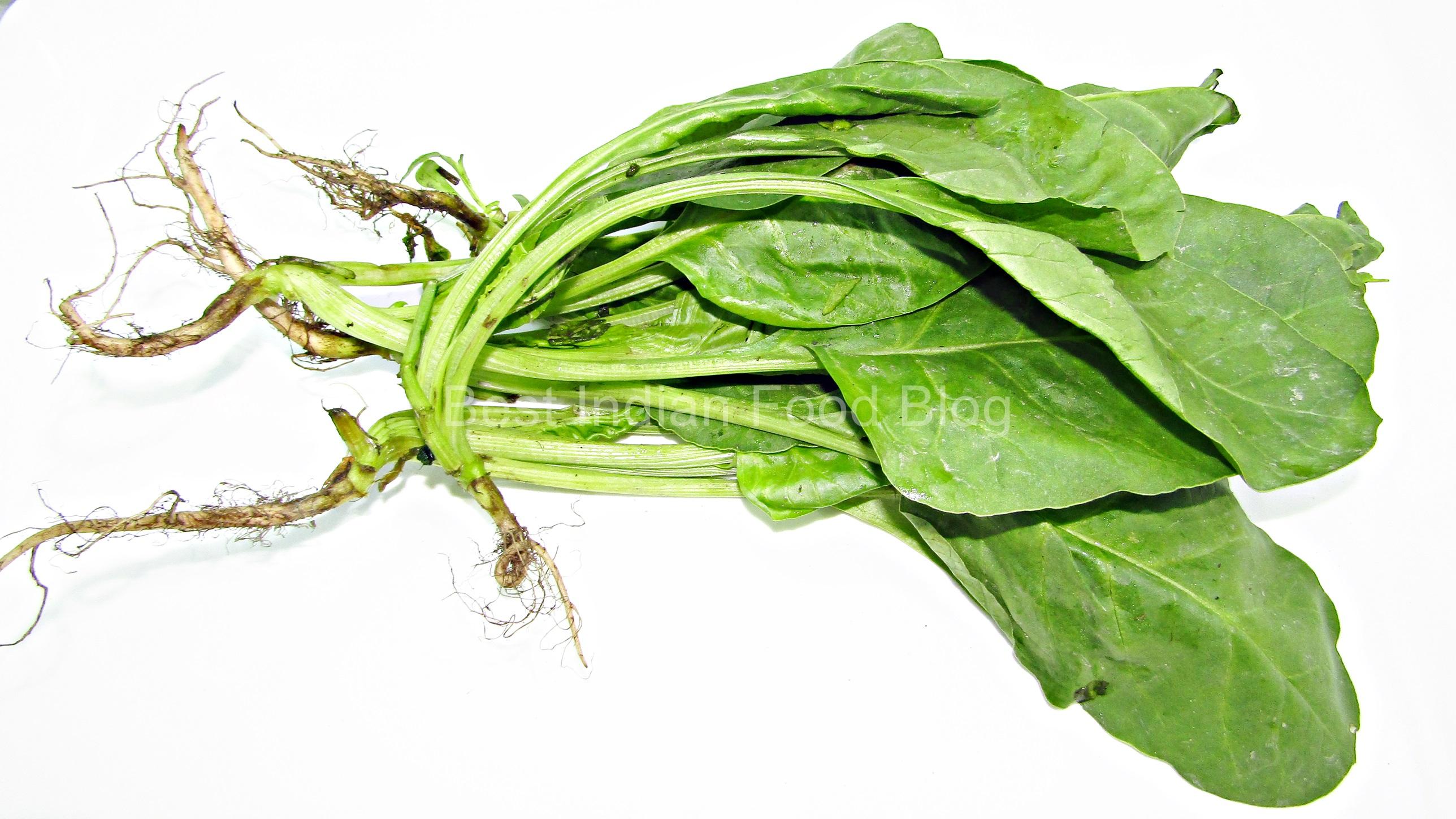 Spinach, Palong, Palang, Palak